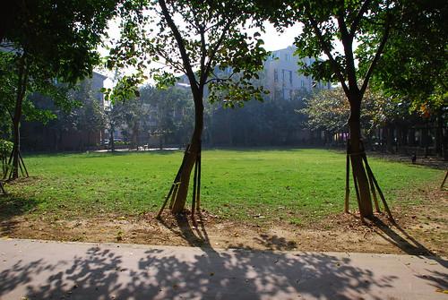 Mini Park #3