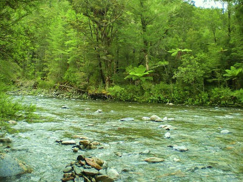 33 River