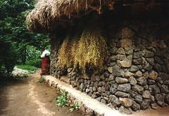 House from Cheju-do (Oegugin) Tags: 1996 korea folkvillage suwon