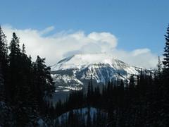 Alberta road trip (1) (Humanoide) Tags: voyage road trip canada calgary rockies route alberta rocheuses