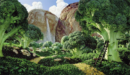 Foodscapes carl