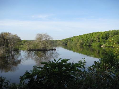Kuala Selangor Nature Reserve