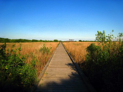 Boardwalk to nowhere