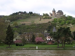 Rhine River Apr 08 026 (MurphMutt) Tags: castle germany rhineriver
