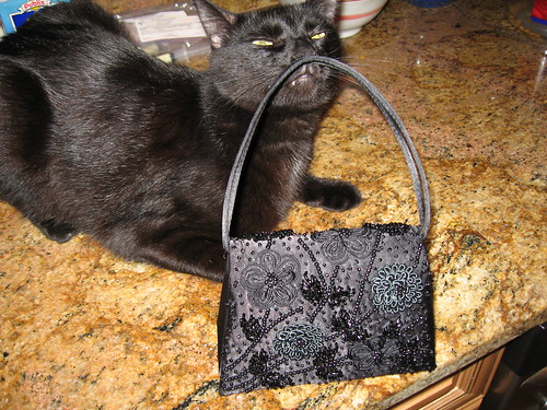 Ellie sniffs my black-tie purse.