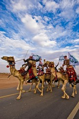 Camels On-Road..!! (Ageel) Tags: road street old trip travel blue sky people cloud white man art history colors clouds speed d50 lens photography nikon colorful photographer desert fineart culture sigma kingdom wideangle bluesky arabic passengers explore arab saudi sa arabian 1020mm saudiarabia freelance photogenic ksa sigma1020mm freelancer      explored  anawesomeshot  ageel