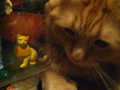 Jasper inspecting action figure Jasper