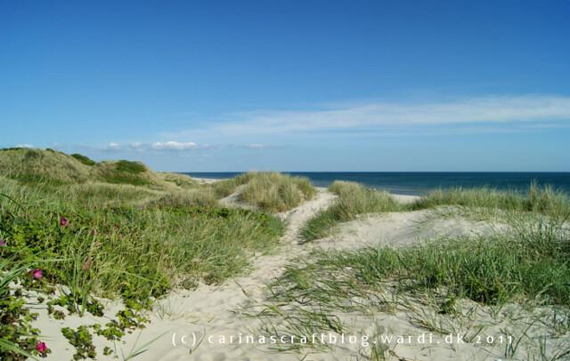 Dunes at Blåvandshuk Denmark