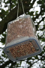 Carter's Jackdaw-Resistant Bird Feeder