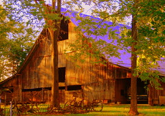 Middleton Barn (~M~Chelle & her view***) Tags: old usa nature beauty barn natural rustic charm mo missouri ozarks soe 1837 passionphotography challengeyouwinner mywinners taneycounty superbmasterpiece infinestyle middletonproperty bransonarea ~m~chelle trilakesarea