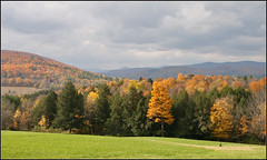 Woodstock (Dave Delay) Tags: autumn vermont foliage woodstockvt