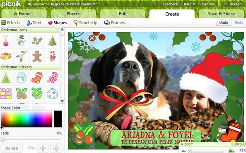 Picnik Edicion de Fotos Online y Profesional