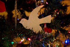 Dove (desbah) Tags: christmas decorations holiday dove decoration christmastree ornament ornaments
