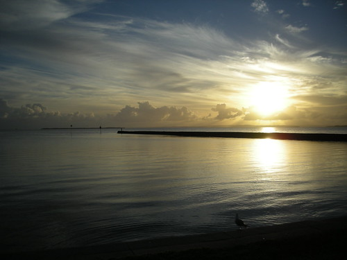 Dawn at Wynnum