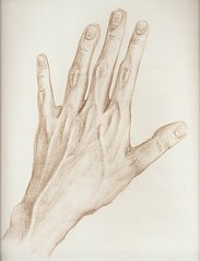 Etude (main gauche) 27.06.98 (Insula dulcamara) Tags: moleskine pencil sketch hand drawing fingers sketchbook study left