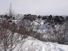 rocks (Dotcomscot) Tags: iceland tour myvatn akureyri