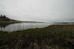 IMG_0201 copy (ryanrichardson) Tags: scenic rop wareham tidalflat