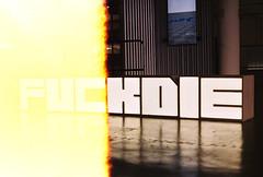 .fed up. (Camila Guerreiro) Tags: film expiredfilm kodak leica lightleak camilaguerreiro exhibition são paulo hitosteyerl leicar4 kodakgold400 35mm expired analog grain