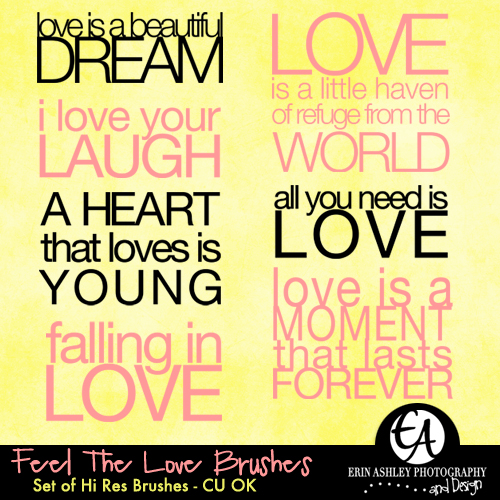 http://erinashleyphotography.blogspot.com/2009/05/freebie-feel-love-brushes.html