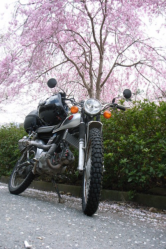 Honda CL80