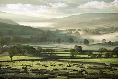 A Yorkshire Dale (gms) Tags: uk england mist rural countryside nationalpark yorkshire valley dales yorkshiredales viewfromcottage