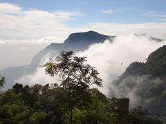 coonoor view , the nilgiri
