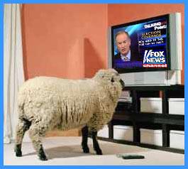 Sheeple Fox News
