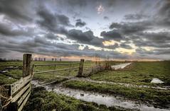 Sealevel -1 (Danil) Tags: sunset sky holland wet water dutch grass rural fence spectacular boer 1 cow zonsondergang nikon daniel nederland pasture groningen hdr weiland landschap sealevel platteland sigma1020