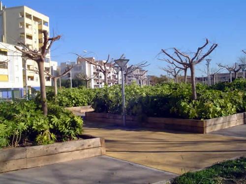 parque de Son Costa - sa Fertilitzadora