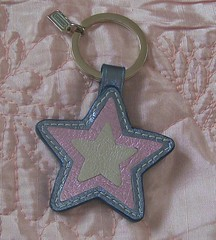 Coach ombre star charm