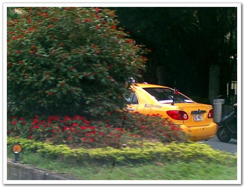 521馬治元年-北市驚見計程車降半旗抗議