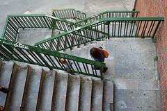 IMG_1943m (matteo_dudek) Tags: scale stairs travels steps fromabove bilbao viaggi euskadi bilbo basquecountry gradini dallalto challengeyouwinner photofaceoffwinner photofaceoffgold pasvasco paesebasco pfogold