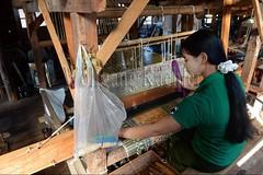 30098736 (wolfgangkaehler) Tags: asia asian southeastasia myanmar burma burmese inlelake villagelife lake innpawkhonevillage woman workshop people worker working weaver weaving weavingloom weavinglooms weavingcloth loom looms