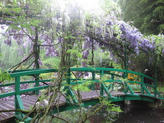 Monet's garden (avilasal) Tags: 365 giverny monetsgarden twitter365