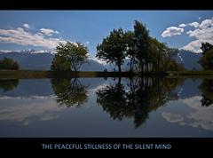 PEACEFUL STILLNESS (Arie van Tilborg) Tags: reflection silent suisse peaceful monk tibet mind tibetan svizzera stillness ch reflectie zwitserland fishingpond anawesomeshot saviese granois arievantilborg etangderocher