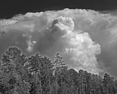 Storm Clouds (Just Joe ( Finally getting the hang of this)) Tags: blackandwhite clouds arkansas stormclouds severeweather may25 tornadoes 05252011