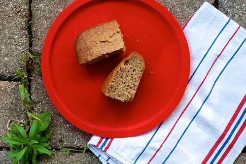 Sweet Sourdough Cake