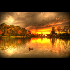 Calimero (Dimitri Depaepe) Tags: autumn sunset lake reflection water clouds duck bravo watertower hdr calimero themoulinrouge magicdonkey superaplus aplusphoto infinestyle thegoldenmermaid theperfectphotographers thegardenofzen thegoldendreams