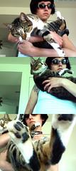 Photo 257_trip (myguerrilla) Tags: house selfportrait kitchen sunglasses cat hugging holding softness comfort calmdown pbsp