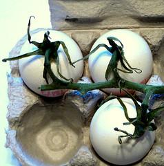 Eggplant (unripe)
