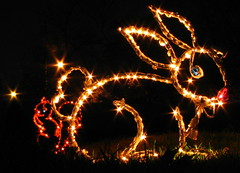 Christmas at Centennial Park #5:   Bunny Lights