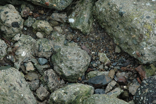 Rocks at the shore
