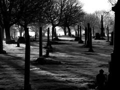 cemetery sunrise mono