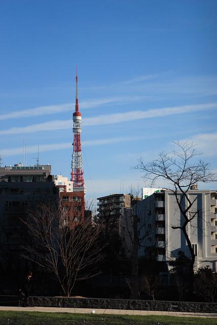 斜面とタワー