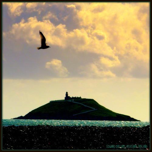 Island Cork