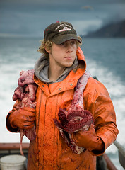 Matthew_and_Innards (coreyfishes) Tags: ocean sea snow color ice dutch weather alaska danger harbor photo fishing fisherman king raw arnold picture wave crab corey catch kingcrab discovery harsh beringsea crabbing rollo bering snowcrab opilio deadliest deadliestcatch coreyfishes