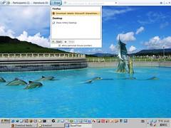 Microsoft ShareView Beta 2