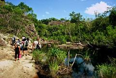 Beautiful Kakadu (MagdaBis) Tags: park travel trees people plants green film water canon day ae1 nt sunny australia slide national transparency kakadu northern territory