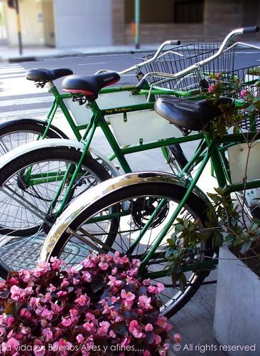 Domingo, bikes