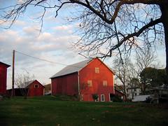 Red Barn 2
